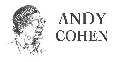 Andy Cohen Blues Musician